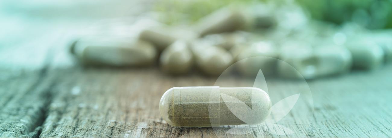 Microdose CBD: Cách tìm ra liều lượng cho riêng bạn bằng liều siêu nhỏ 2