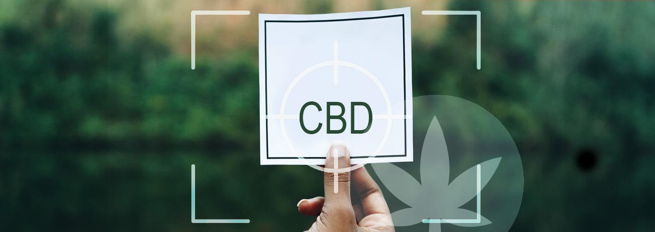 CBD tác động giảm thiểu triệu chứng ADHD 6