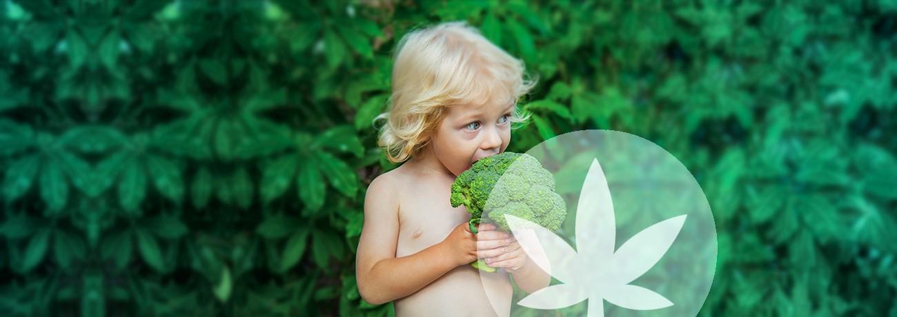 la dieta è a base vegetale