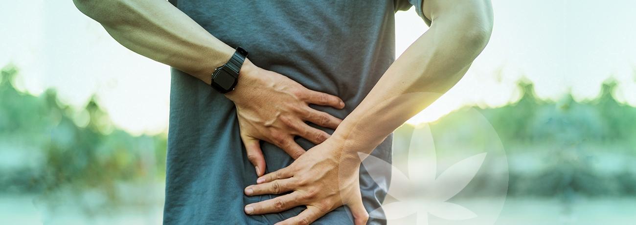 CBD and back pain