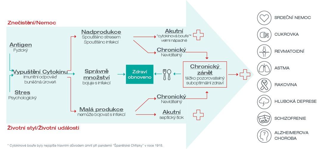 chronický inflační infographic