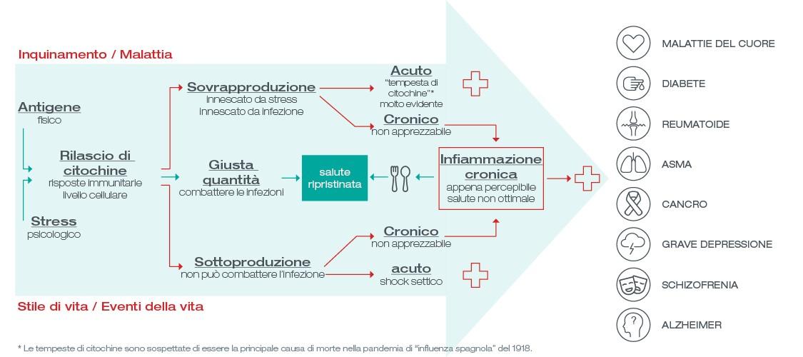 infografica di infiammazione cronica