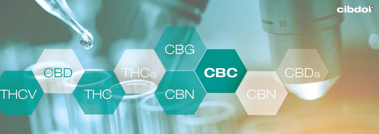 Hva er CBC (cannabichromene)?