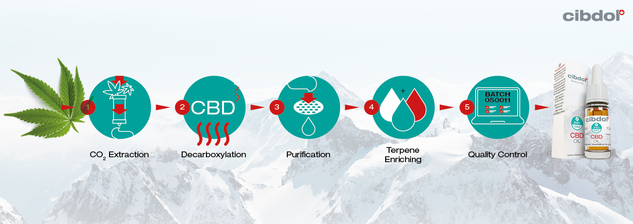 CBD Extraction Process