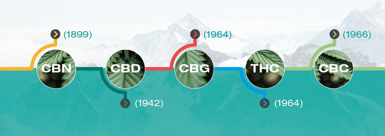 När upptäcktes cannabinoider?