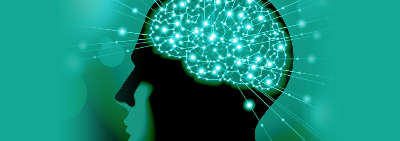 Endokanabinoīdu sistēmas reseptori smadzenēs
