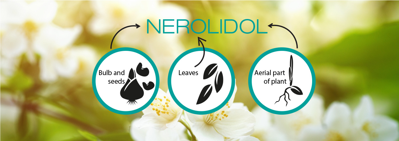 What is Nerolidol?