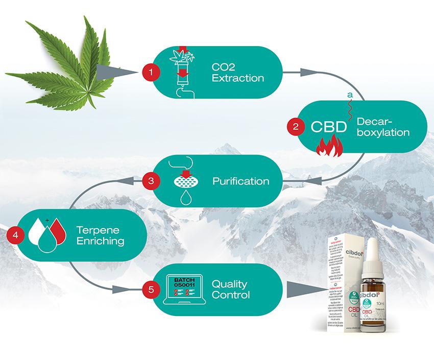 Fremstilling af CBD olie | Cannabisolie