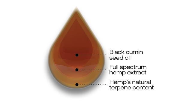 Drop blackseed oil