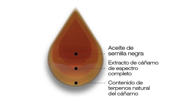 aceite de semilla de comino negro y CBD