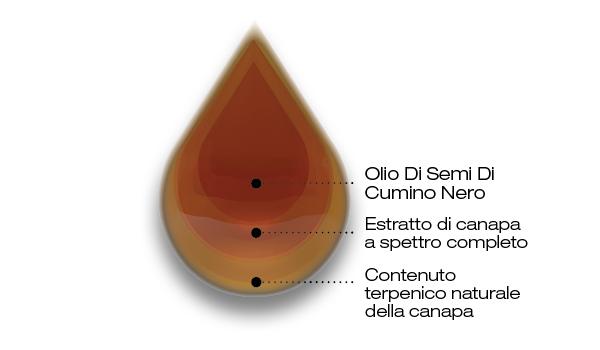 olio di semi di cumino nero e CBD