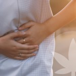 Medical Cannabis And IBD: What Does The Research Say?