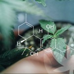 What Makes Raw Cannabinoids So Special?